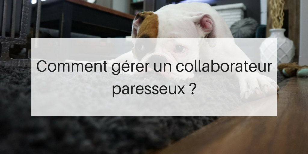 twitter-blog-gerer-collaborateur-paresseux